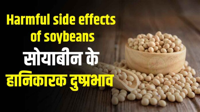 Harmful side effects of soybeans